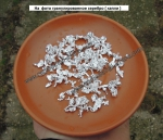 Капельное серебро часть 2
